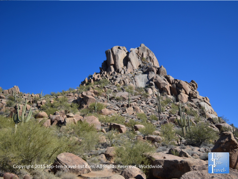 Mountain with lots of cactuses on the Pinnacle Peak trail in Scottsdale Arizona