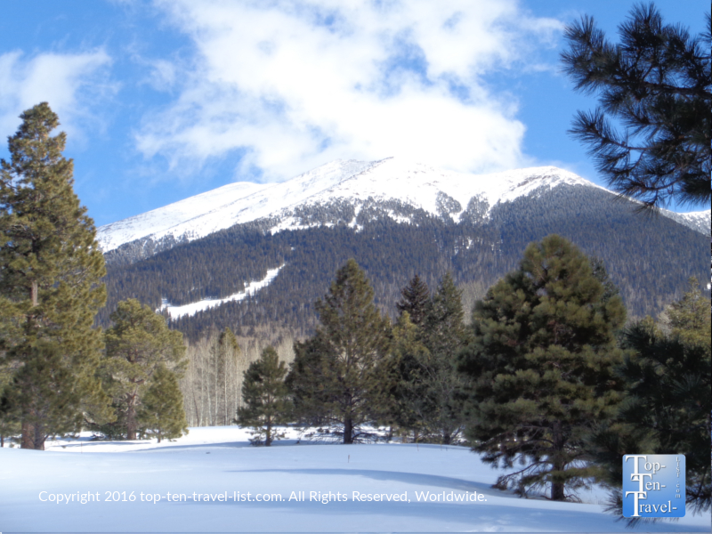 Check out these gorgeous mountain views along the Aspen Nature Loop!