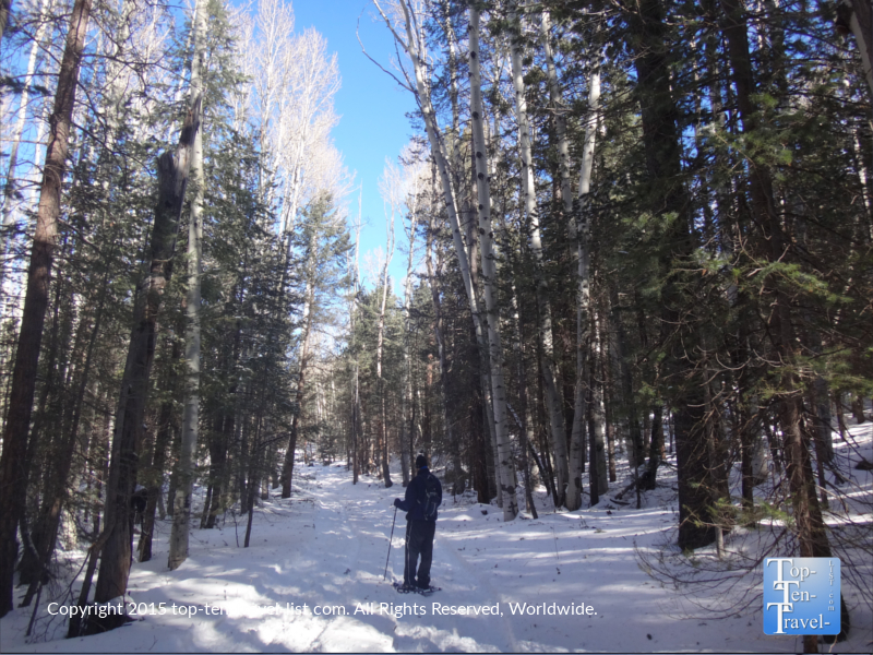 Snowshoeing at beautiful Veit Springs in Flagstaff, Arizona