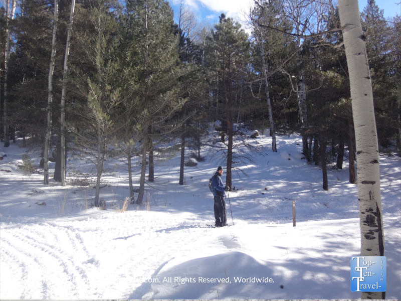 Alone in the wilderness - Snowshoeing on Flagstaff's Veit Springs trail in the winter