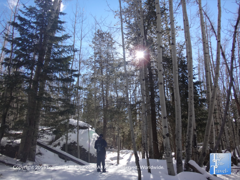 A winter snowshoe hike along beautiful Veit Springs trail in Flagstaff, Arizona