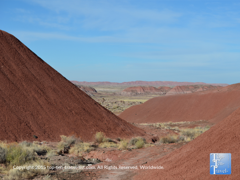 Hiking the Petrified Forest National Wilderness Area