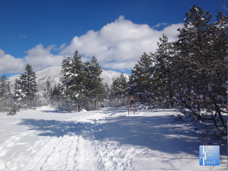 A beautiful snowy path around Buffalo Park in Flagstaff, Arizona