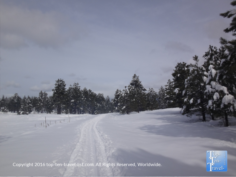 Quiet winter views at Fort Tuthill Park in Flagstaff, Arizona