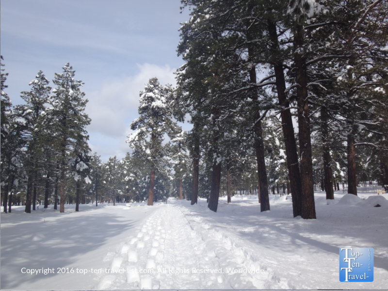 A winter wonderland at Fort Tuthill County Park in Flagstaff, Arizona