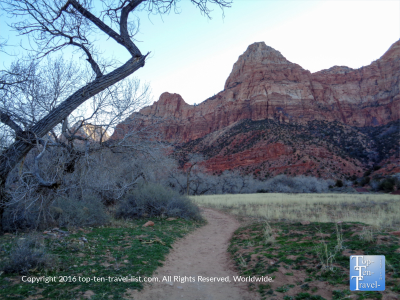 A view of the stunning scenery along Zion's Watchman Trail