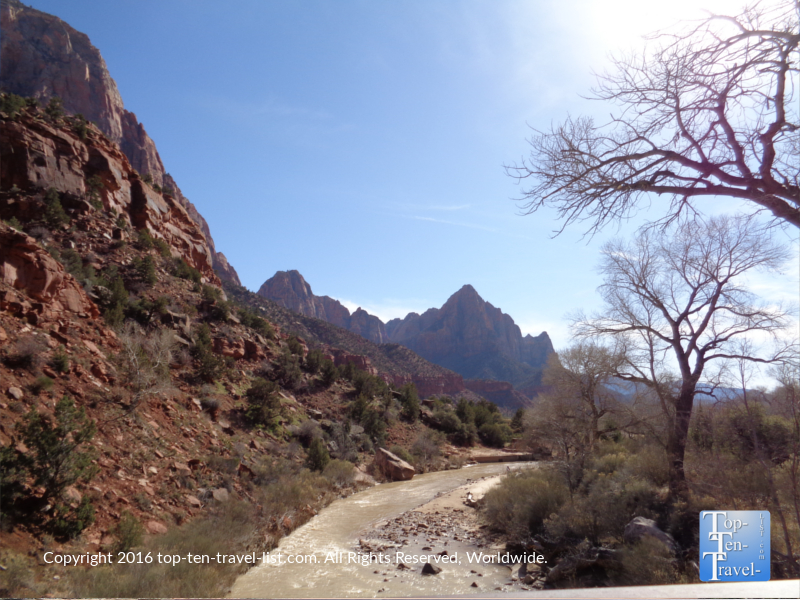 Gorgeous views of the river on the Zion National Park Scenic Drive