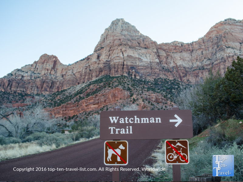 Hiking the Watchman Trail at Zion National Park