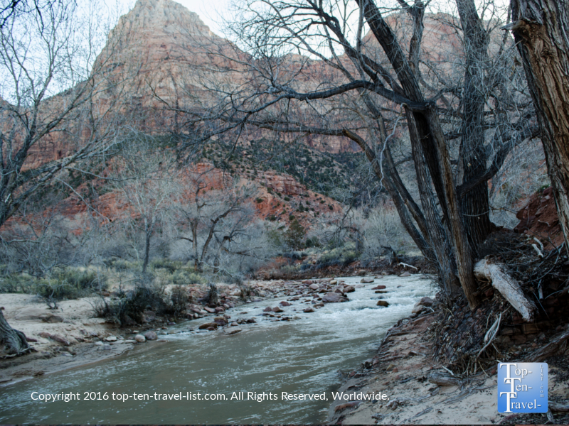 Peaceful river views along the Watchman Trail at Zion National park