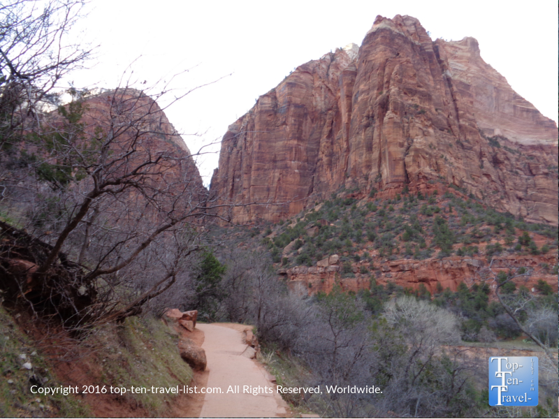 View of the Lower Emerald Pools path at Zion National Park