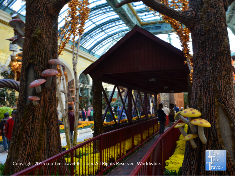 Fall decor at the Bellagio Conservatory in Vegas
