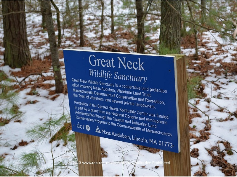 Great Neck Wildlife Refuge in Wareham, Massachusetts