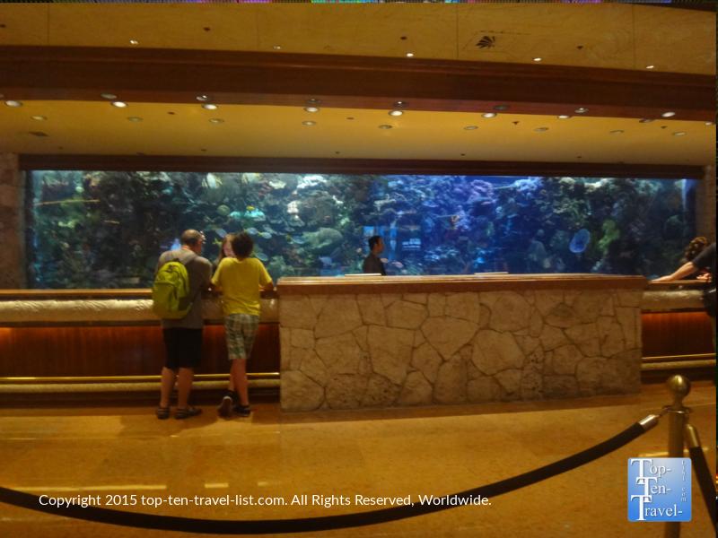 With free attractions and unique sights lurking in every corner (including the gorgeous 20,000 gallon saltwater tank at the Mirage), there really is no reason to waste your time or money gambling!