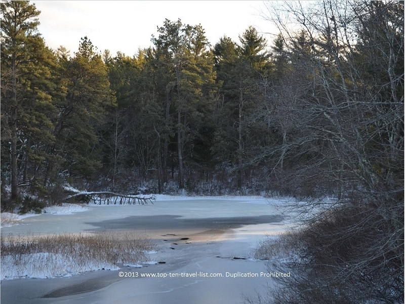 Icy winter views at gorgeous Myles Standish State Forest in Carver, Massachusetts