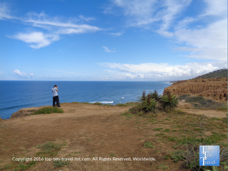 Photographing gorgeous Torrey Pines Nature Reserve in La Jolla CA