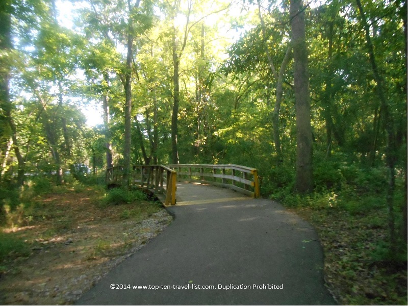 Waccamaw Neck Bikeway in Huntington Beach State Park near Murrells Inlet, South Carolina