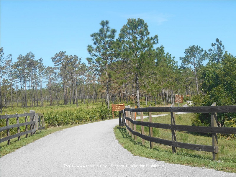 The beautiful tree-lined bike trail at Jay B. Starkey Park in New Port Richey, Florida