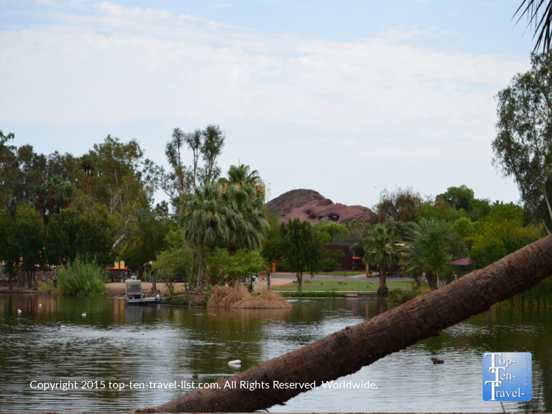 A pretty lake at the Phoenix Zoo