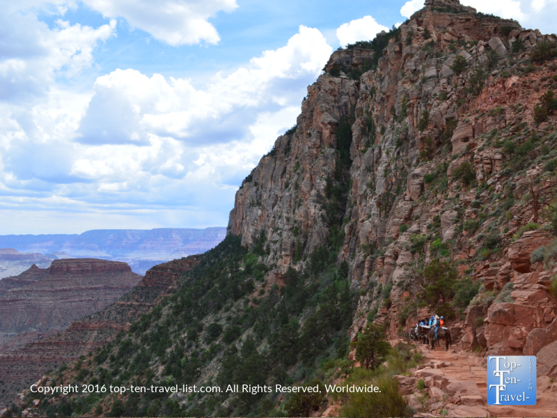Mule riders taking a break to soak in the views along the Kalibab trail at Grand Canyon