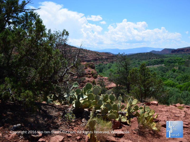 A scenic overlook from the Templeton Trail in Sedona