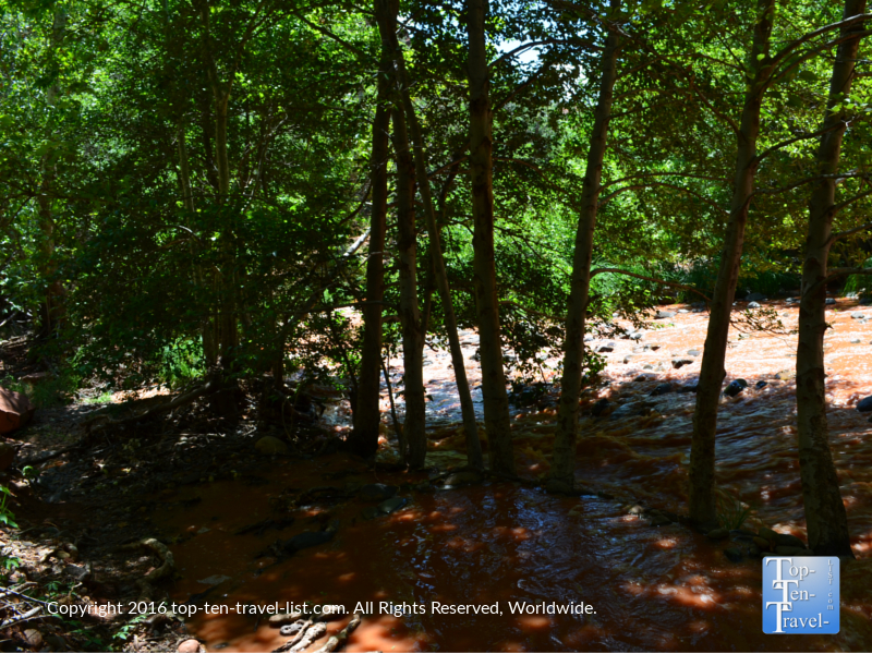 Beautiful creek views along the Templeton Trail in Sedona AZ