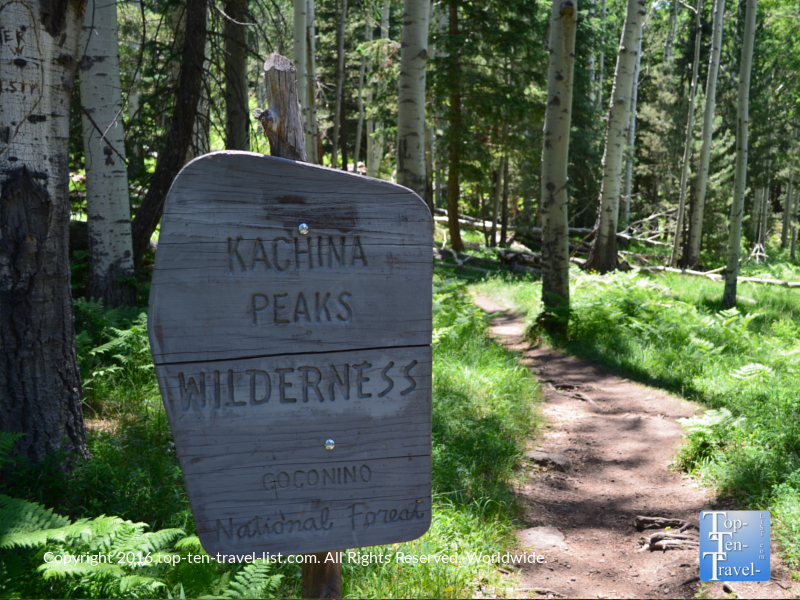 Kachina Peaks wilderness sign in Flagstaff AZ along the Kachina trail