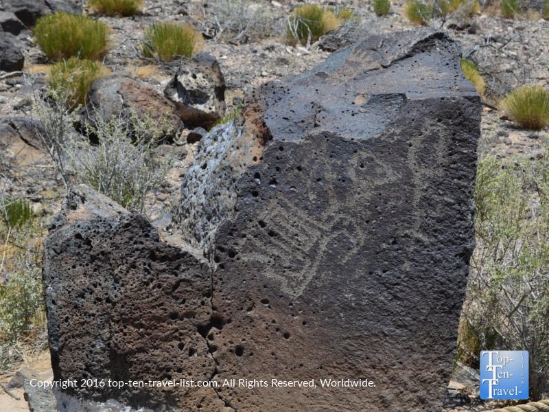 Petroglyph at Petroglyph National Monument in Albuquerque NM 6
