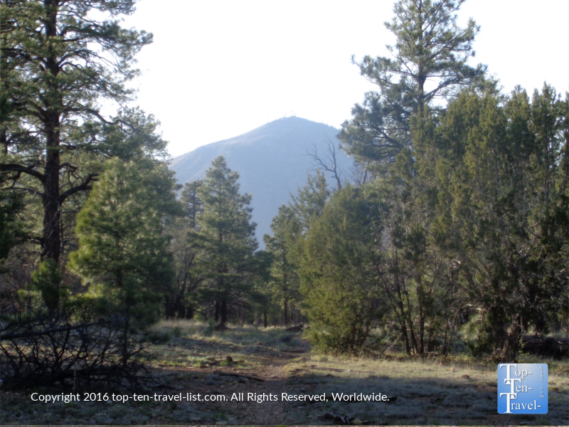 Pretty mountain views from the Walnut Meadow Loop,part of the Campbell Mesa Loop trail system in Flagstaff, Arizona