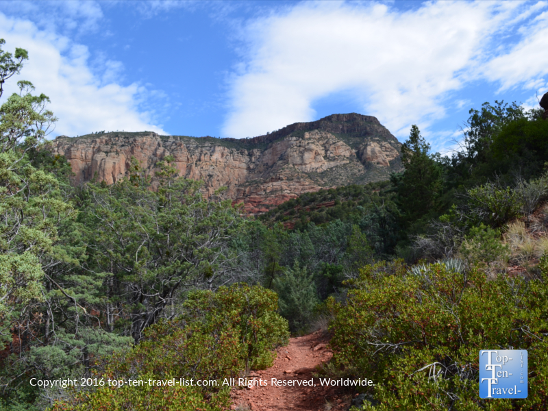 A view of the Wilson Canyon hike in Sedona AZ