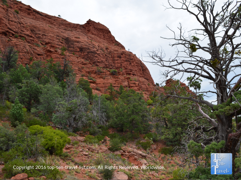 Gorgeous views along the Jim Thompson trail in Sedona AZ