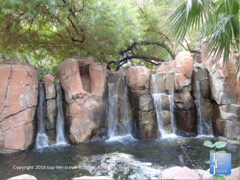 Waterfall at the Wildlife Habitat at the Flamingo in Las Vegas, Nevada