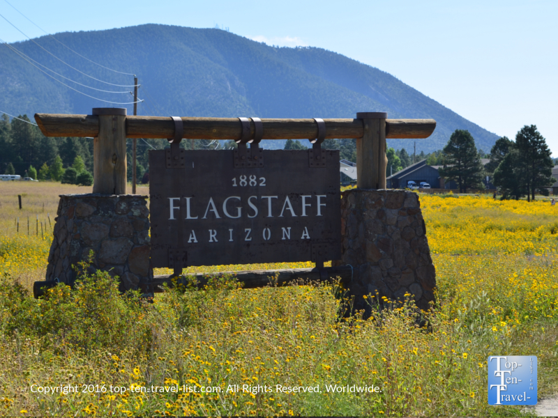 Flagstaff sign surrounded by pretty wildflowers