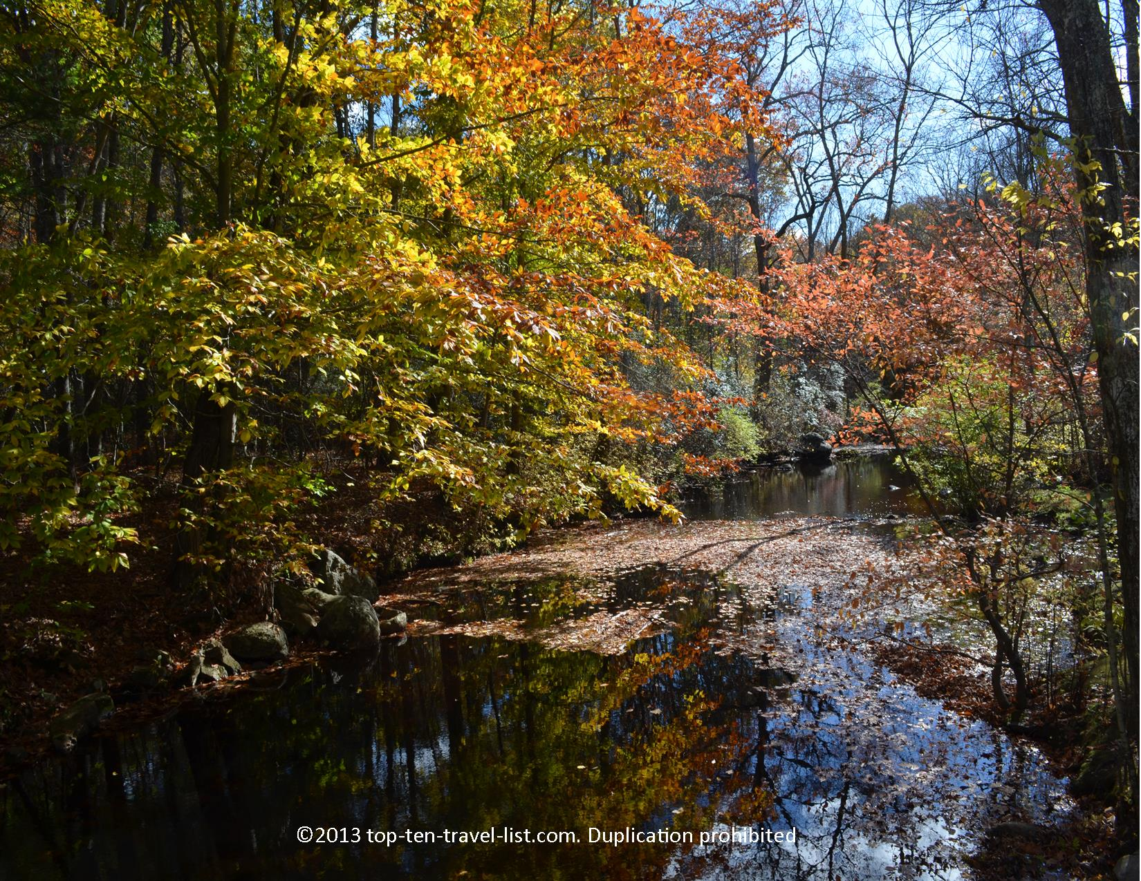 The beautiful fall colors at Devil's Hopyard State Park in East Haddam, Connecticut