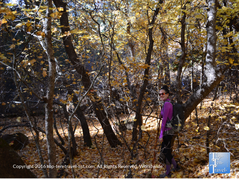 hiking-sedonas-west-fork-trail-in-the-fall