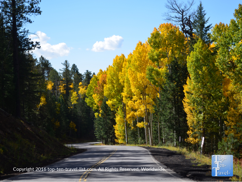 scenic-fall-drive-on-snowbowl-road-in-flagstaff-az