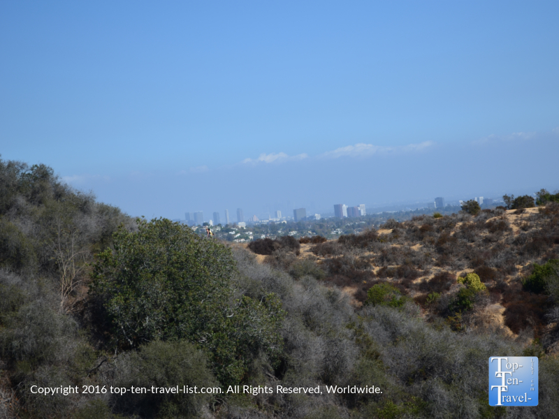 the-la-skyline-from-the-los-liones-trailhead