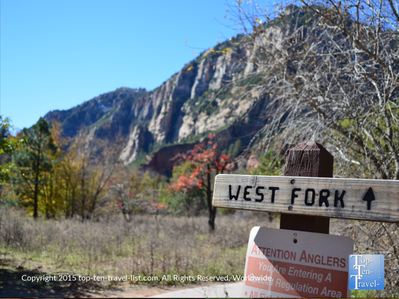 west-fork-trail-in-sedona-az