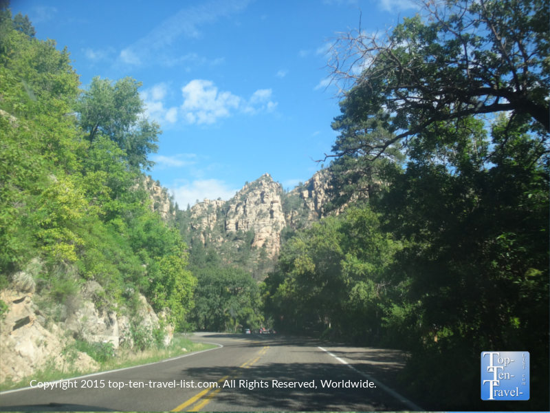 Beautiful trees on Oak Creek Canyon Scenic Drive in Sedona, Arizona