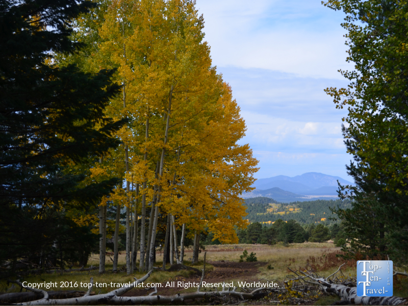 aspens-and-mountain-views-at-snowbowl-in-flagstaff