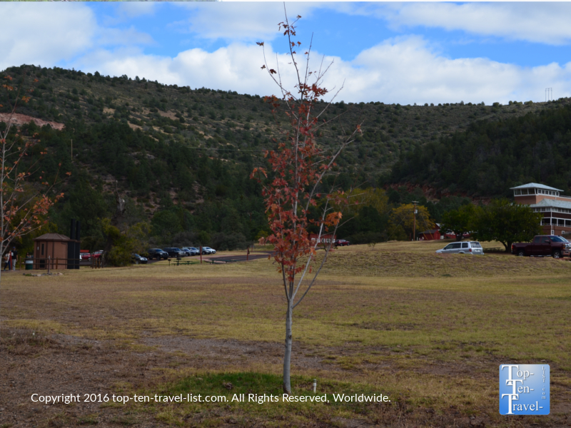 red-fall-foliage-at-tonto-natural-bridge-state-park