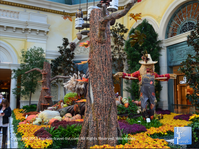 Fall at the Bellagio Gardens in Las Vegas, Nevada