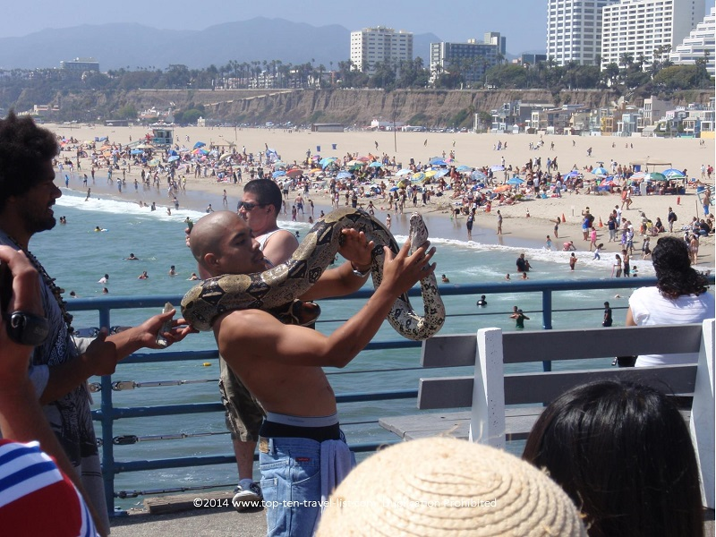 Man holding a huge snake on the Santa Monica Pier