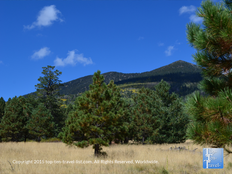 Pretty mountain views from the Weatherford Trail in Flagstaff, Arizona