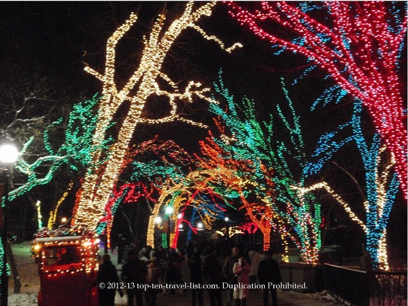 Holiday lights at Lincoln Park in Chicago, Illinois