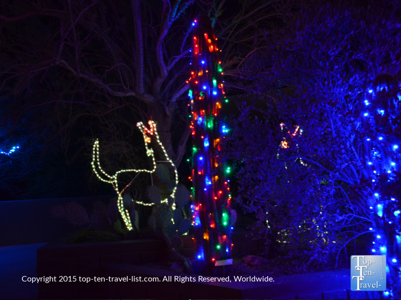 Phoenix Zoo Lights cactus display