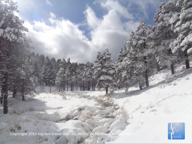A beautiful winter day along the Pumphouse Wash trail in Flagstaff, AZ