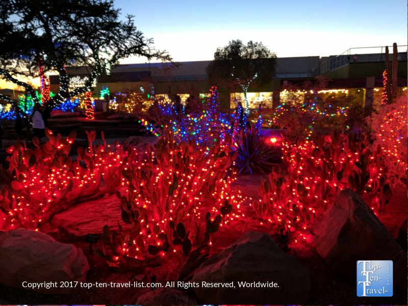 Beautiful red cactus lights at Ethel M Chocolates in Henderson NV