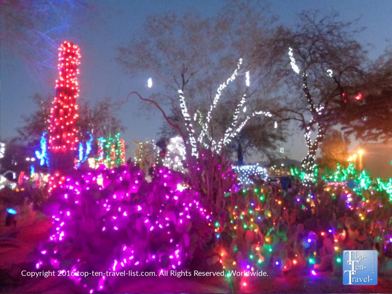 Bright holiday cactus display at Ethel M Chocolates in Henderson NV