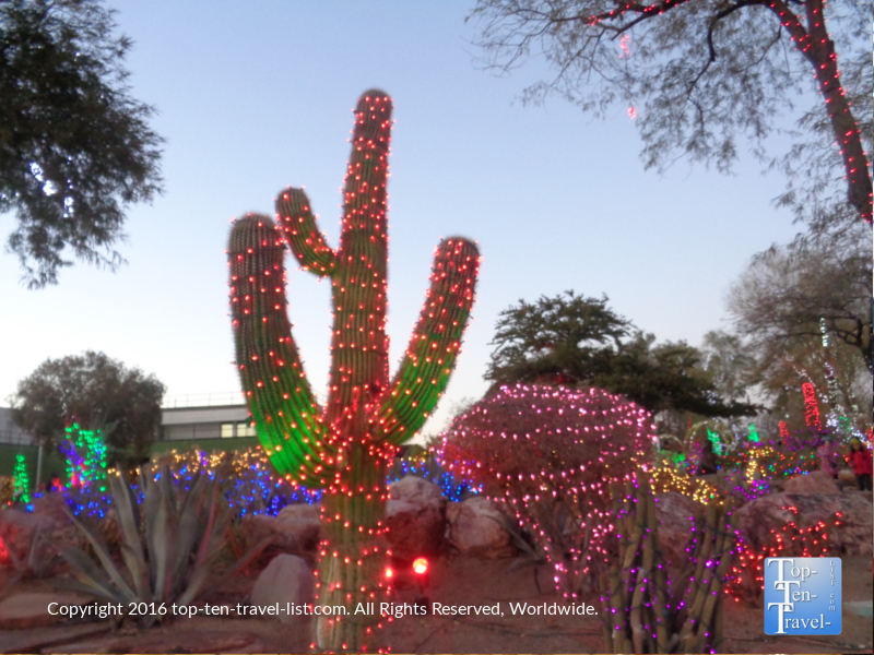 Cactus holiday lights at Ethel M Chocolate Factory