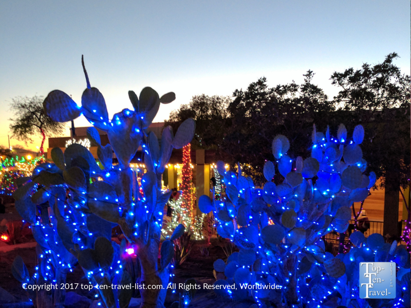 Gorgeous blue cactus lights at Ethel M Chocolates in Henderson NV
